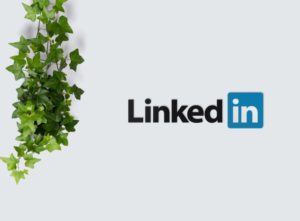 LinkedIn a specjaliści