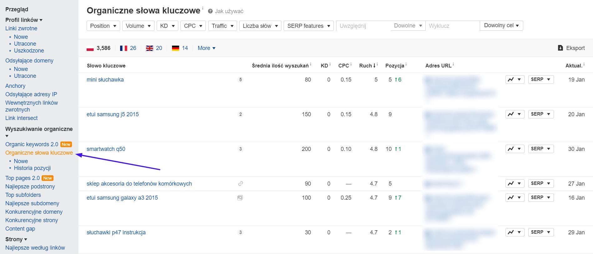 Jak sprawdzić pozycję i widoczność strony w Google?